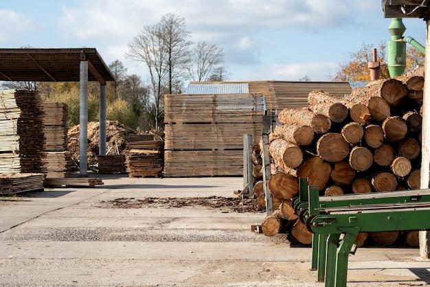 Houtoogst - opgestapelde stammen van gekapte bomen