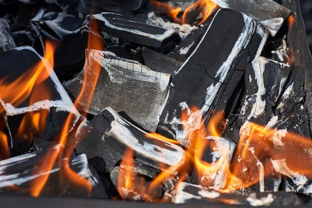 Houtskool in brand voor een barbecue op een picknick.