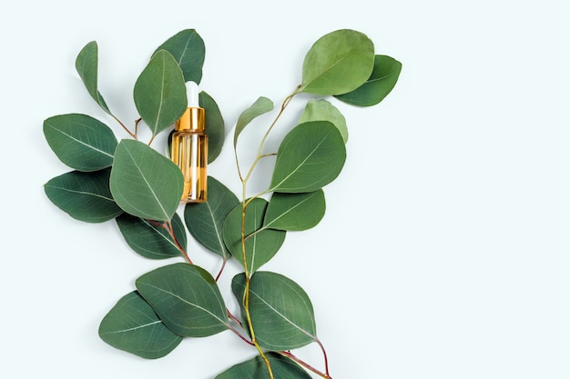 Huidverzorgingsessentie glazen fles met natuurlijke eucalyptusbladeren op lichte achtergrond, hydraterend anti-aging serum, collageen en peptiden