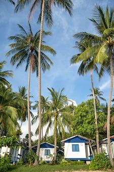 Huis aan het strand in de buurt van palmbomen met uitzicht op het zandstrand