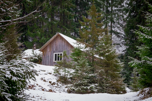 Huis in de winter bos
