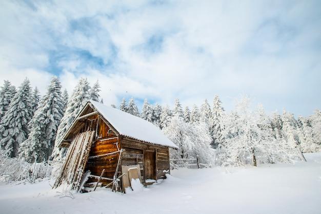 Huis in de winter