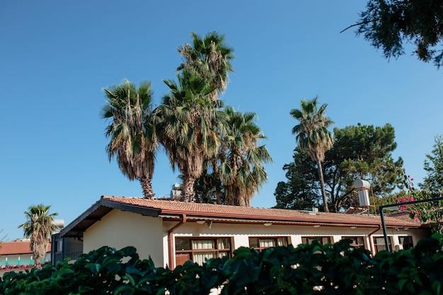 Huis in een palmentuin tegen een concept van blauwe hemel azië reisbestemmingen
