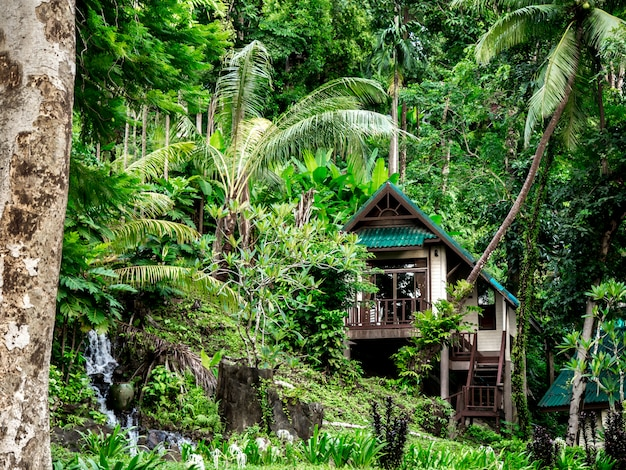 Huis in tropisch woud in thailand