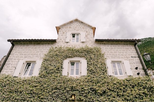 Huis met ramen en open luiken met jasmijn tegen de muur.