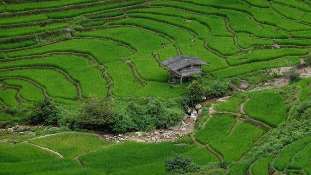 Huis op rijstterras op de berg in het district mae chaem, in de provincie chiang mai.