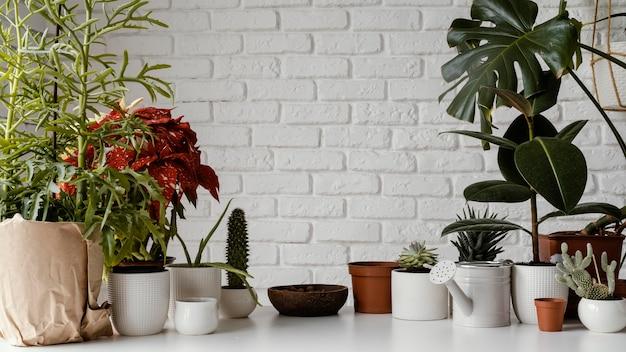 Huis tuin arrangement met kopie ruimte