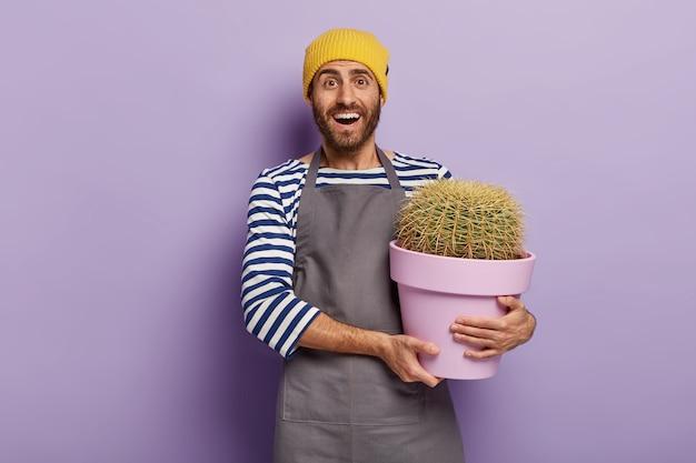 Huis & tuin. blij ongeschoren man bloemist zorgt goed voor kamerplanten, houdt cactus in grote pot
