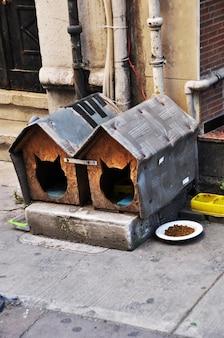 Huis voor katten in de straat van istanbul. twee huisjes voor een kat en voer voor katten
