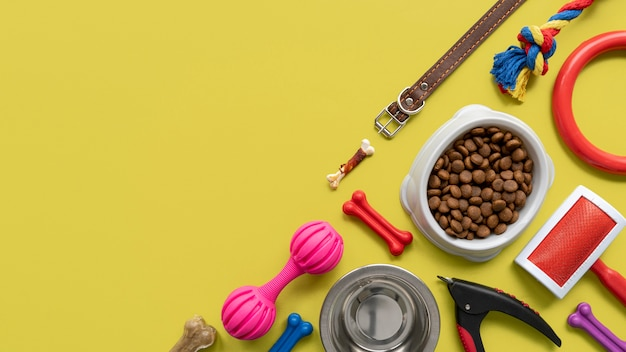 Huisdieraccessoires stilleven concept met riem en kleurrijk speelgoed