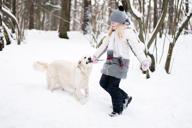 Huisdieren in de natuur - een prachtige golden retriever speelt met de eigenaar met een stok in een winter besneeuwd bos