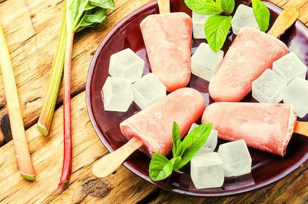 Huisgemaakt ijs met rabarber en munt. ijs op stokje en ijs