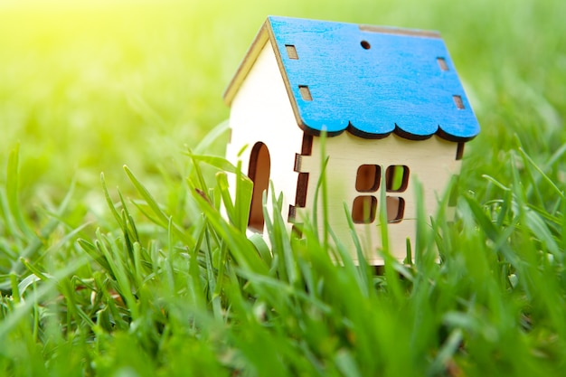Huisje op het gras