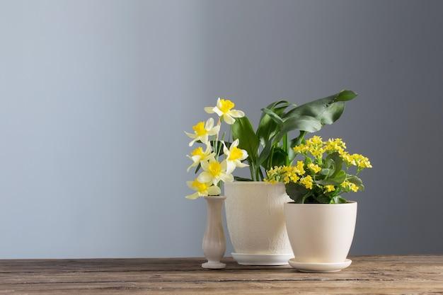 Huisplanten in potten op houten tafel op donkere achtergrond