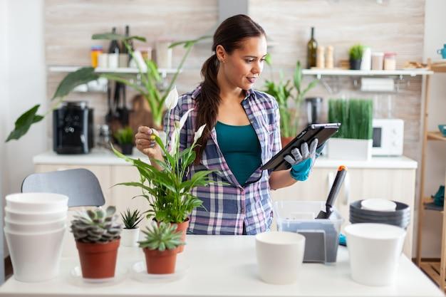 Huisvrouw plant bloemen na instructies van tablet-pc in de keuken thuis in