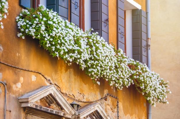 Huizen met bloemen voor de ramen in venetië.