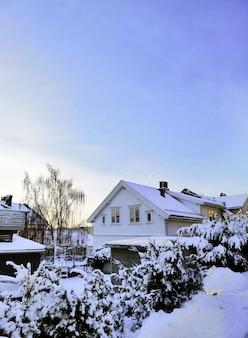 Huizen omgeven door bomen bedekt met de sneeuw in larvik in noorwegen