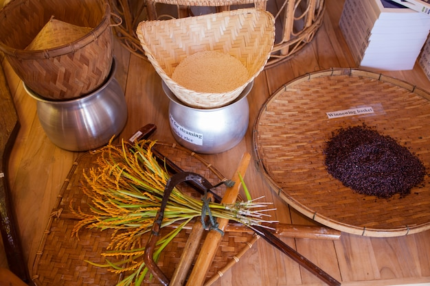 Hulpmiddelen in de rijstcluster in expo 2015, milaan