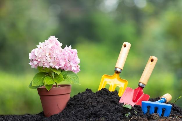 Hulpmiddelen tuingrond en hydrangea hortensiabloem in bloempot