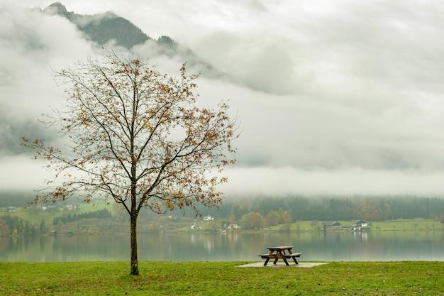 Humeurig herfstlandschap met kale boom en eenzame bank aan de oever van het bergmeer.