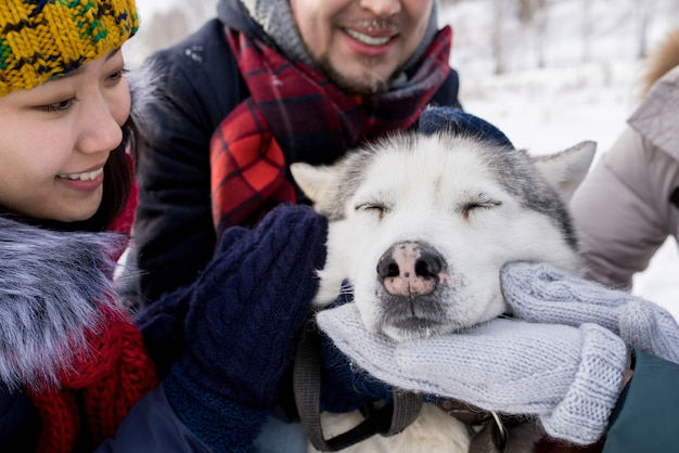 Husky hond genieten van wrijft