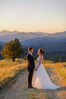 Huwelijksfotografie in de bergen. de bruid en bruidegom houden de hand op de achtergrond van de oude 100 jaar oude beuk. zonsondergang.