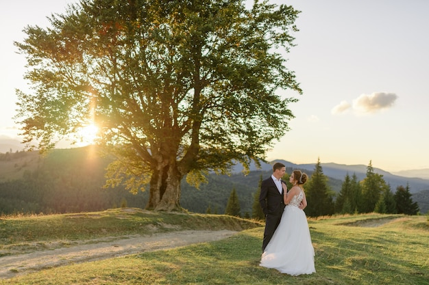 Huwelijksfotografie in de bergen. de pasgetrouwden omhelzen elkaar en kijken elkaar in de ogen tegen het landschap van een honderdjarige beuk.