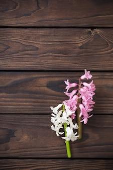 Hyacintbloemen op donkere houten