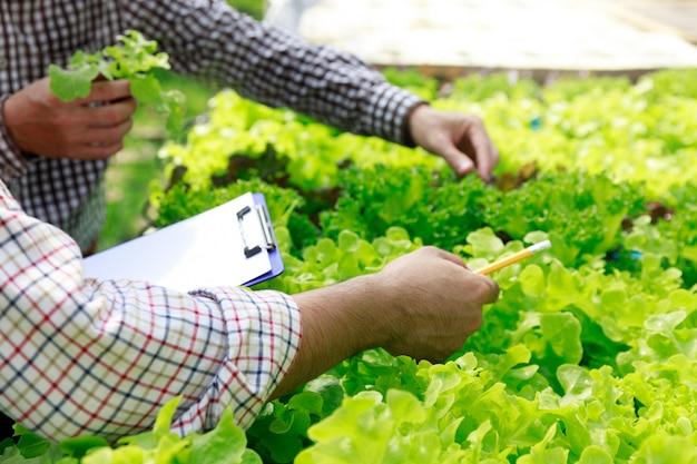 Hydrocultuur boerderij, testen van werknemers en verzamel omgevingsgegevens van biologische slagroenten in de tuin van de serreboerderij.