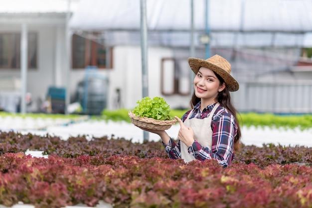 Hydrocultuur groenteboerderij. gelukkige jonge aziatische vrouw die organische groentemand houdt die zij zelf heeft geplant.