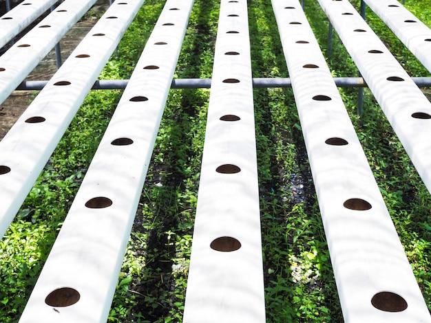 Hydrocultuur groenteplantgaten op stalen buis teelt planten in gaten op ijzeren sporenapparatuur