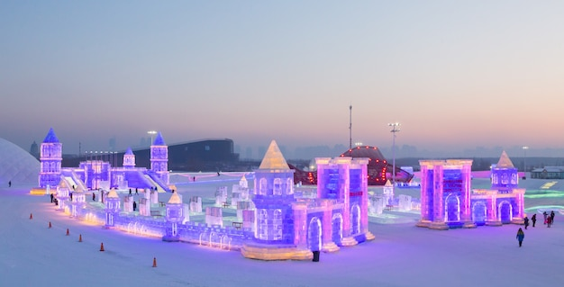 Ice-snow world