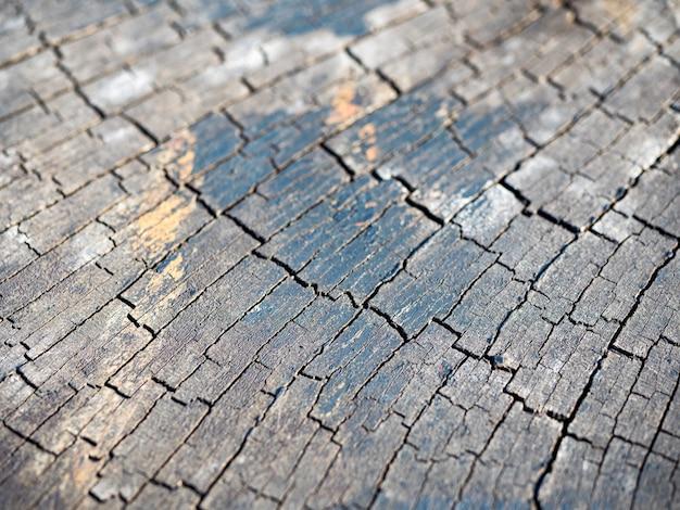 Ideale ronde omgekapte boom met jaarringen en scheuren. houten textuur.