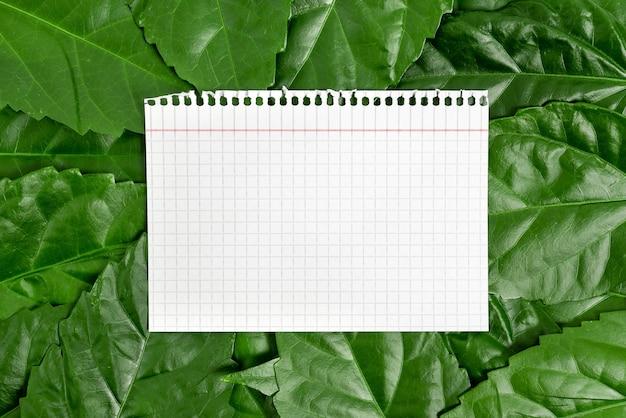 Ideeën voor natuurbehoud schrijven milieubehoud plannen organische materialen tuinieren