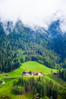 Idyllisch berglandschap in de alpen met frisse groene weiden