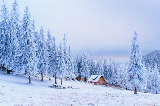 Idyllisch huisje in de winter