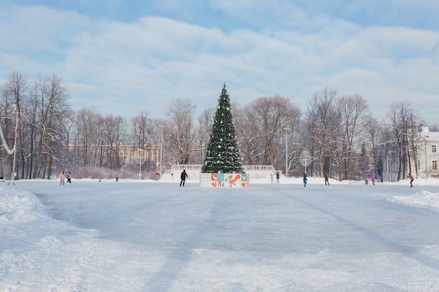 Ijsbaan met een kerstboom in het midden op een zonnige dag op yelagin island in sint-petersburg, rusland.