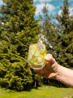 Ijsblokjes met bloemen in een glas