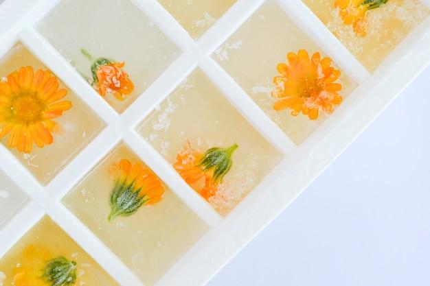 Ijsblokjesbakje met bevroren calendulabloemen. bovenaanzicht