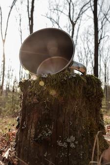 Ijzeren mok ligt in het bos op een boomstronk