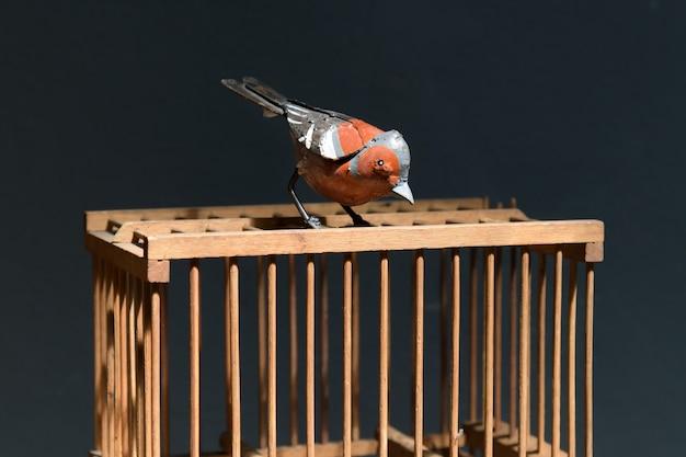 Ijzeren vogel zat bovenop een houten kooi