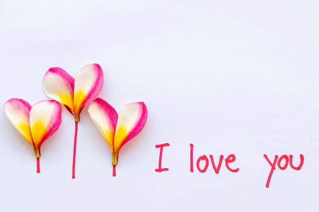 Ik hou van je handgeschreven bericht met bloemen op wit
