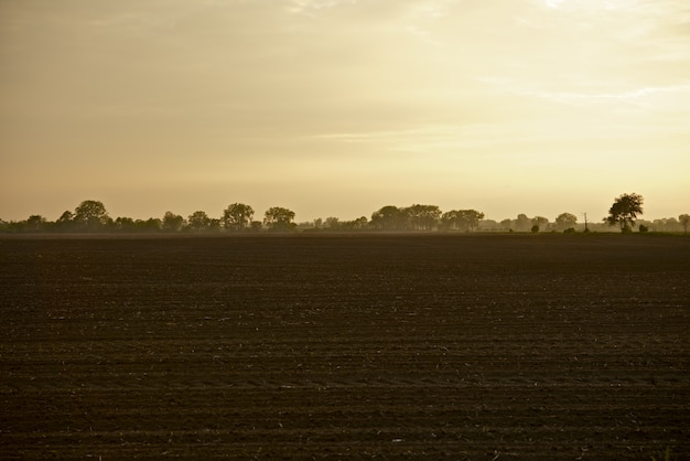 Illinois farmlands