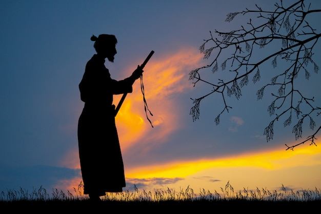 Illustratie van samoerai met katana bij zonsondergang