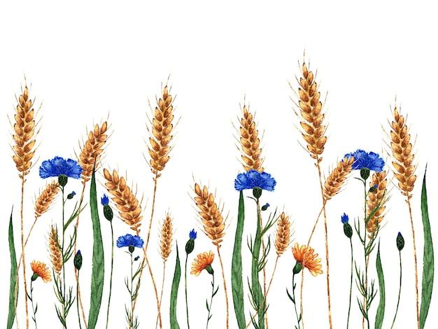 Illustratie van wilde bloemen en gouden tarwe met korrelwaterverf die op wit wordt geschilderd