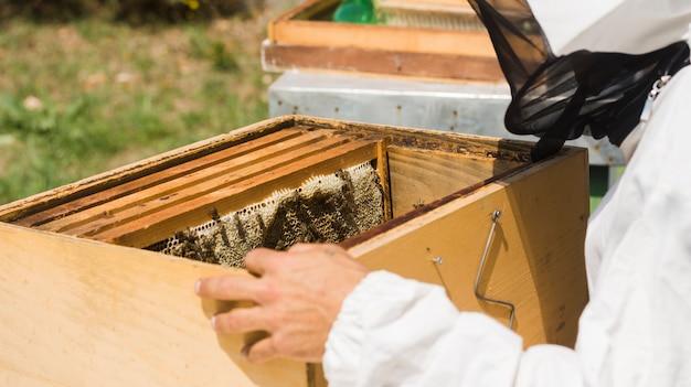 Imker die honing haalt