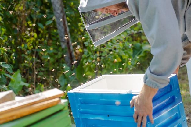 Imker draagt eenheid bijenkorf van piepschuim. uitbreiding van bijenkolonies.