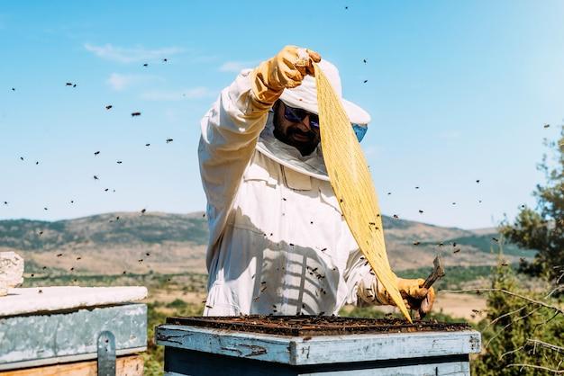 Imker werkt honing verzamelen