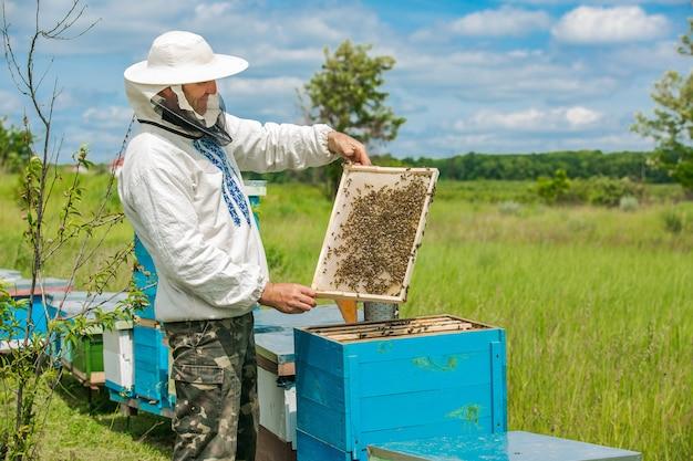 Imker werkt met bijen en bijenkorven in de bijenstal. frames van een bijenkorf. imker op het werk. bijenteelt