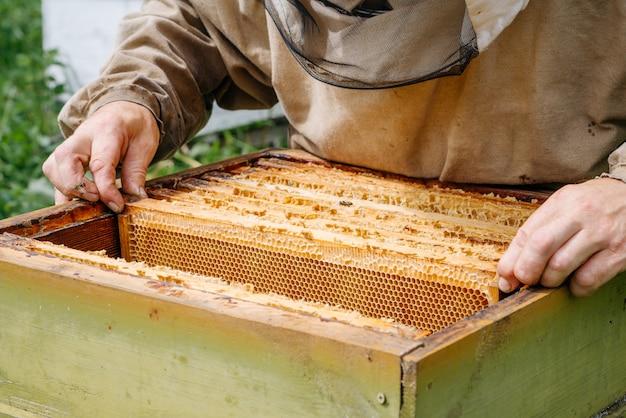 Imker werkt met bijen in de bijenstal.
